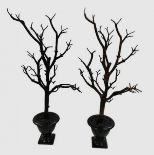 Spooky Black Trees